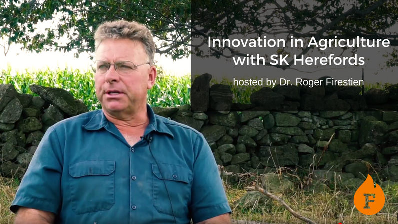 Video: Innovation in Agriculture with SK Herefords hosted by Dr. Roger Firestien