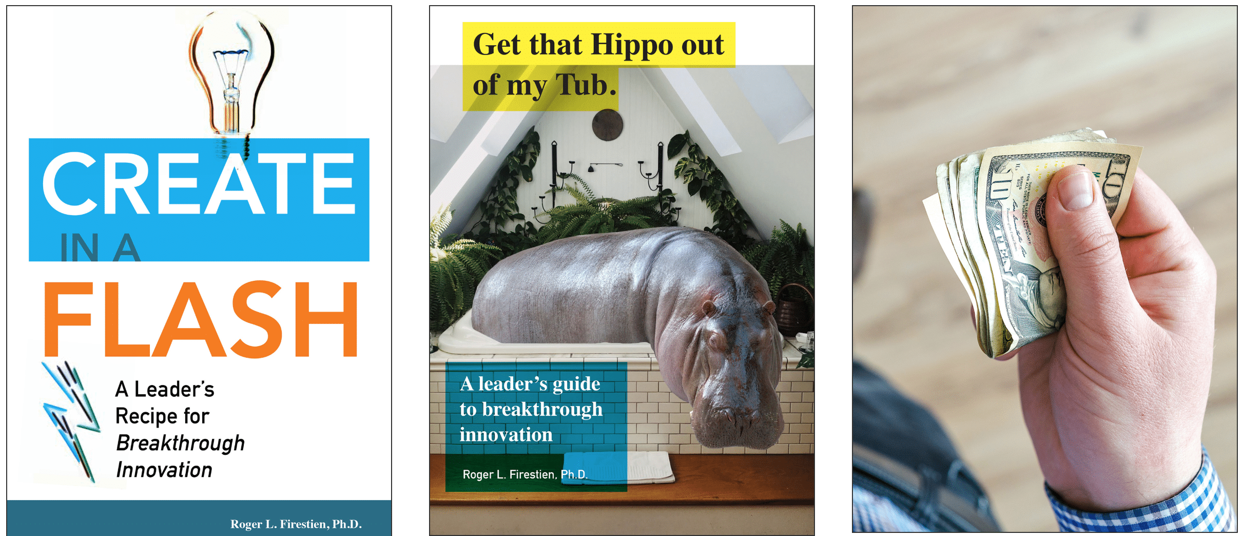 A Hippo, A Lightbulb or One Hundred Dollars